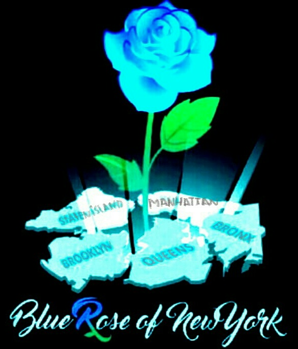 Blue Rose Of New York